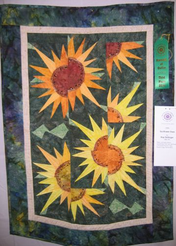 Western Nc Quilters Guild 2010 Harvest Of Quilts Show Awards